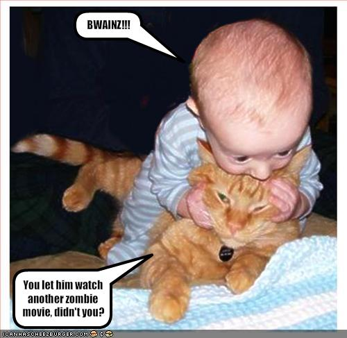 funny baby with cat
